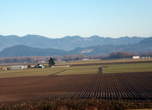 Anacortes Farm land