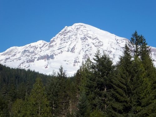 Ranier from the lodge