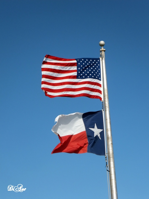 the-eyes-of-texas